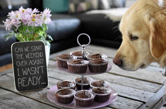 1chokladmuffins.jpg